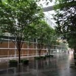 小雨の東京国際フォーラム